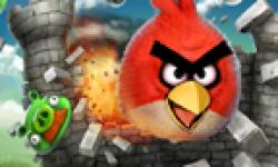 Angry Birds head 1