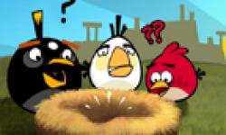 Angry Birds head 2