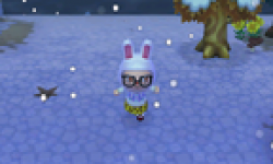 Animal Crossing New Leaf 14 02 2013 head 1