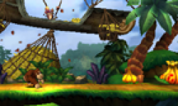 Donkey Kong Country Returns 3D 14 02 2013 head 3