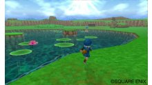 Dragon-Quest-Monsters-Terry\'s-Wonderland_21-12-2011_screenshot-21