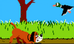 duckhunt icon
