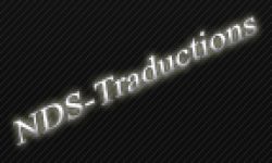 nds traductions logo