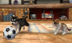 Nintendogs + Cats head 1