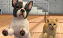 Nintendogs + Cats head 3