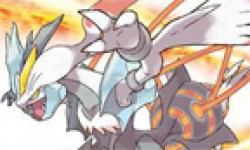 Pokémon Blanc Noir 2 head 1