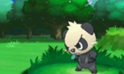 Pokémon X Y 15 05 2013 head 1