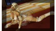 screenshot-capture-image-dead-or-alive-dimensions-nintendo-3ds