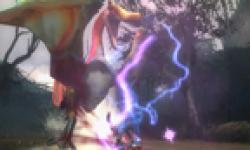 screenshots captures images monster hunter tri g nintendo 3ds vignette head