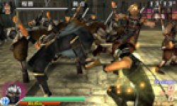 Vignette Dynasty Warriors VS